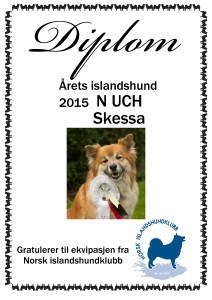 2015 islandshund Skessa